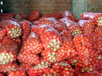 Soğanın fiyatı 20 kuruşa kadar düştü
