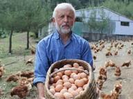 500 tavukla başladı, şimdi para basıyor