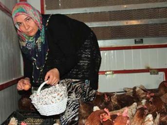 Ev hanımıydı, kendi çiftliğini kurdu