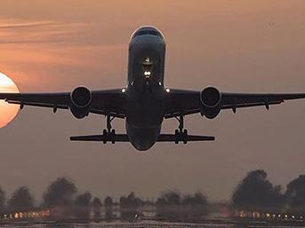 American Airlines çalışanları şirkete dava açmaya hazırlanıyor