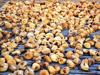 Aydın'daki ilk kuru incir 200 TL'den satıldı