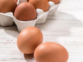 Fransa 'gezen tavuk' yumurtacılığına geçecek