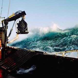 Denizde yaşam mücadelesi