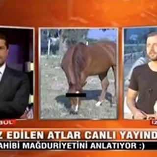 Türk televizyonlarında gerçekleşmiş en acayip olaylar