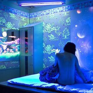 Japonya'nın seks odaları