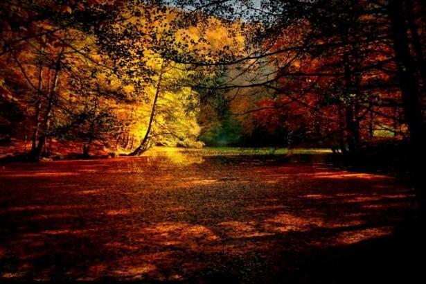 Yedigöller'de muhteşem sonbahar