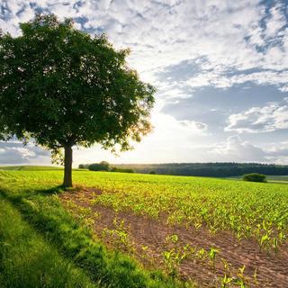 Muhteşem manzara fotoğrafları!..