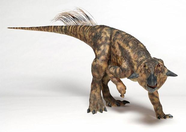 Dinozorlar görkemli tüyleriyle karşınızda