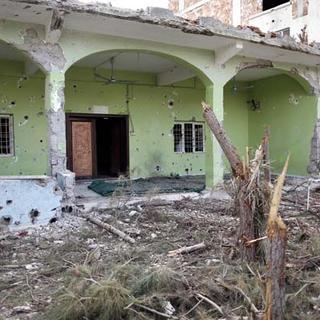 Sur'da terörden sonra hastalık ve yılan korkusu
