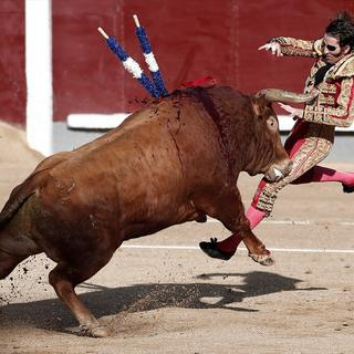Madrid'de' Boğa Güreşi'