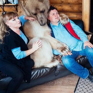 Bu ailenin evcil hayvanı 300 kilo bir ayı