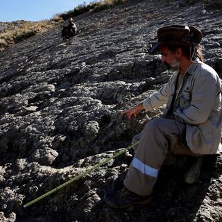 80 milyon yıllık dinozor ayak izi bulundu