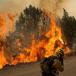 Santa Cruz Dağları'nda orman yangını