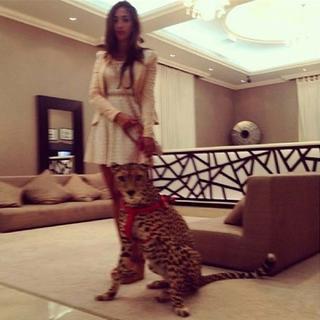 İşte zengin Arapların inanılmaz yaşamı