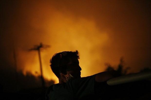 Şili'de orman yangını: Kent tamamen yandı!