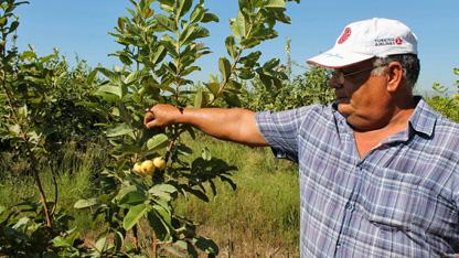 Doğal afetlerden zarar gören 109 bin çiftçinin tarımsal kredi borçları için erteleme yolu açıldı.