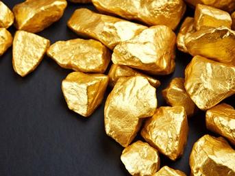İnsan dışkısından altın elde edecekler!