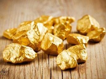 İnsan dışkısından altın çıktı
