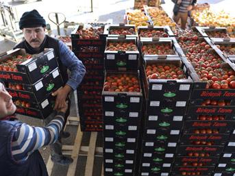 Türkiye'nin meyve-sebzesine ilk müşteri çıktı
