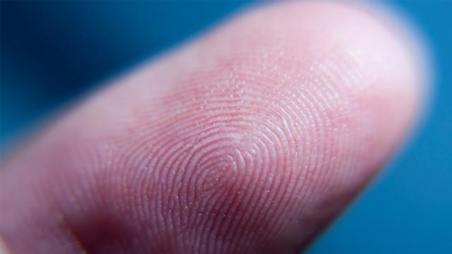 Parmak izi çizginiz cinsel eğiliminizi etkiliyor