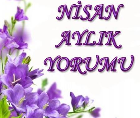 NİSANBURC 450