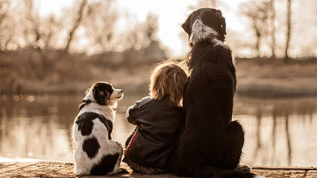 Üç kafadarın arkadaşlığı kalbinizi ısıtacak