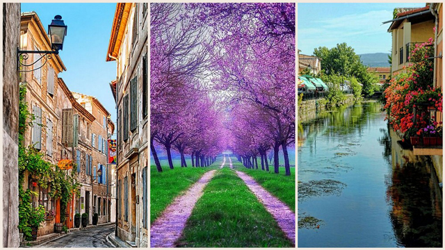 Fransa'nın gizli cenneti: Provence