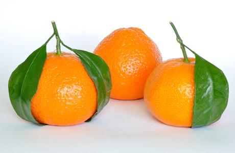 Vitamin deposu: Mandalina