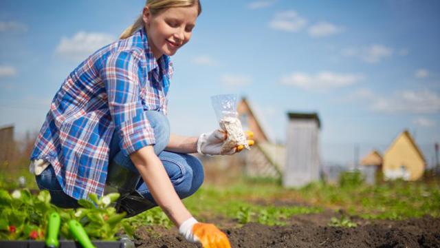 Toprak hem beden hem de ruh sağlığını koruyor