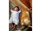 Çocuklar ve Hayvan Dostlarımız