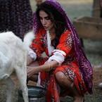 Songül Öden köylü güzeli oldu, süt sağdı