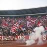 Türk bayrağı yakıp, F.Bahçe'ye küfrettiler