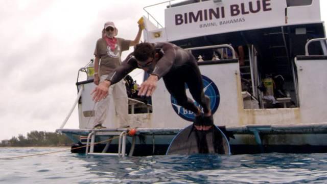 Michael Phelps, köpekbalığı simülasyonu ile yarıştı