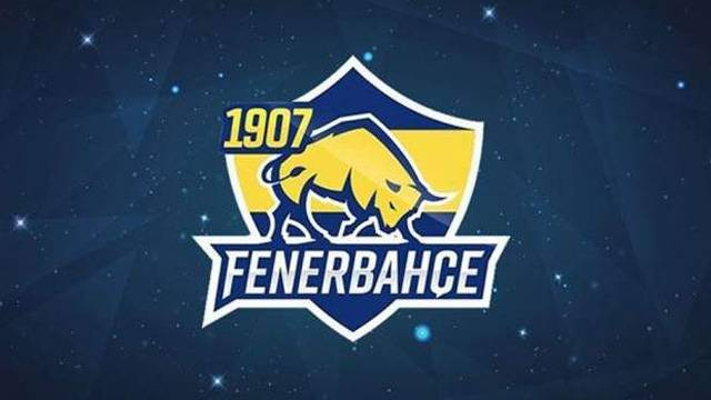 E-Spor'a Fenerbahçe damgası!